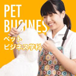ペットビジネス学科