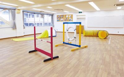 ドッグトレーニング教室