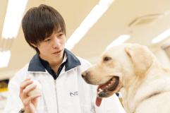 家庭犬トレーニング実習