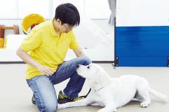 家庭犬トレーナー